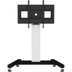 Monitorwagen mit Fahrgestell - nicht höhenverstellbar