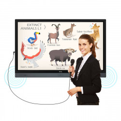 BenQ RP8601K 86'' Display, UHD Touch